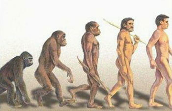 evolucion-involucion-revolution-dogma-de-evolucion