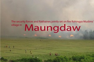 Maungdaw June 2012